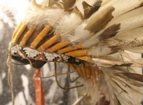 Crow Headdress